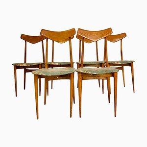 Chaises de Salle à Manger September par Ico & Luisa Parisi, 1970s, Set de 6