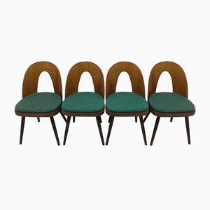 Esszimmerstühle von Antonín Šuman, 1960er, 4er Set