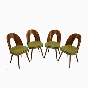 Walnut Dining Chairs by Antonín Šuman, 1960s, Set of 4
