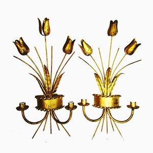 Apliques Tulip Mid-Century de Ferro Art, años 50. Juego de 2