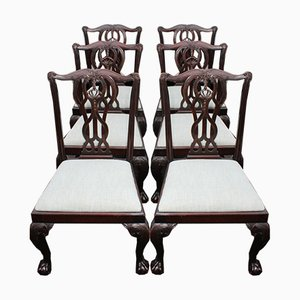 Mahogany Dining Chairs, 1940s, Set of 6