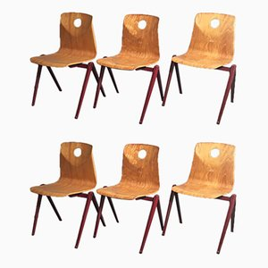 Industrielle Vintage Esszimmerstühle aus Pagholz von Woodmark Mobilier, 1960er, 6er Set