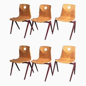 Sillas de comedor industriales vintage de laminado de haya de Woodmark Mobilier, años 60. Juego de 6