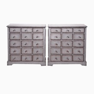 19th Century Scandinavian Pharmacy Dressers, Set of 2