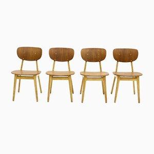 Modell SB13 Esszimmerstühle von Cees Braakman für Pastoe, 1950er, 4er Set