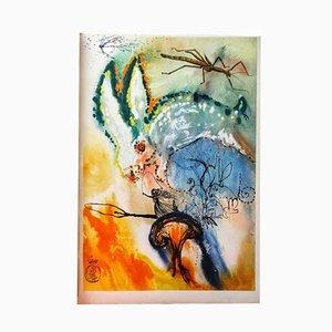 Portafolios de grabados y aguafuertes Alice in Wonderland de Salvador Dali, 1969. Juego de 13