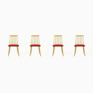 Mid-Century Esszimmerstühle mit Gestell aus heller Buche & rotem Stoffbezug von Stolár, 1960er, 4er Set