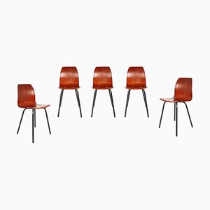 Black Metal and Pagwood Dining Chairs from Pagholz Flötotto, 1960s, Set of 5