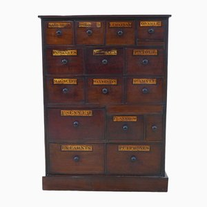 English Apothecary Cabinet with Drawers