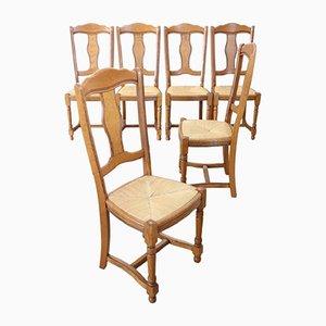 Esszimmerstühle aus Eiche mit Sitzgeflecht, 1950er, 6er Set