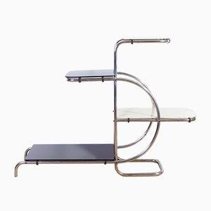 Vintage Bauhaus Pflanzenständer mit verchromtem Stahlrohrgestell von Emile Guyot, 1940er