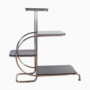 Vintage Bauhaus Chromed Tubular Steel Shelf by Emile Guyot, 1930s