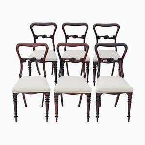 Antike viktorianische Esszimmerstühle aus Palisander, 6er Set
