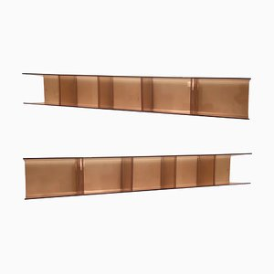 Smoked Plexiglass Shelves, 1970s, Set of 2