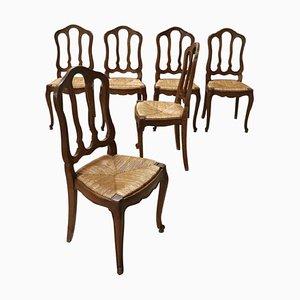Esszimmerstühle aus massivem Kastanienholz & Strohgeflecht, 1920er, 6er Set