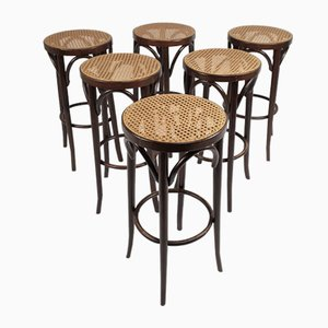 Vintage Bentwood and Cane Bar Stools by Michael Thonet, 1960s, Set of 6