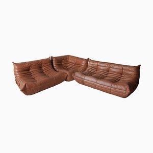 Sofás vintage de cuero marrón de Michel Ducaroy para Ligne Roset, años 70. Juego de 3