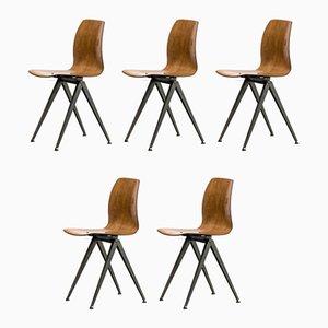 Chaises de Salle à Manger Modèle S19 de Galvanitas, 1960s, Set de 5