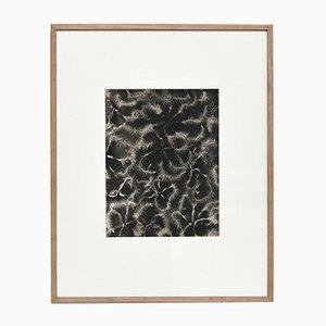 Black & White Flower Photogravure Botanic Photography by Karl Blossfeldt, 1942