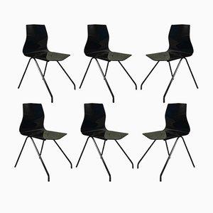 Esszimmerstühle von René Jean Caillette für Steiner, 1958, 6er Set