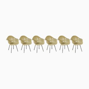 Mid-Century Model DAX Side Chairs by Charles & Ray Eames for Herman Miller, Set of 6