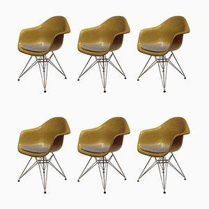 Esszimmerstühle aus Glasfaser von Charles & Ray Eames für Herman Miller, 1970er, 6er Set