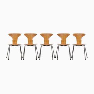 Dänische Modell Mosquito Esszimmerstühle von Arne Jacobsen für Fritz Hansen, 1950er, 5er Set