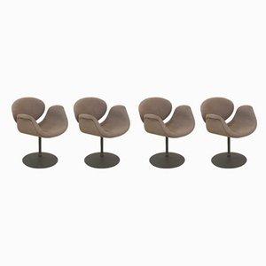 Kleine Tulip Stühle von Pierre Paulin für Artifort, 1980er, 4er Set