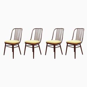 Mid-Century Esszimmerstühle von Antonín Šuman für TON, 1960er, 4er Set