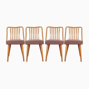 Czechoslovakian Dining Chairs by Antonín Šuman for TON, 1960s, Set of 4