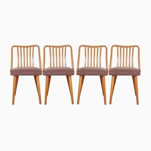 Tschechoslowakische Esszimmerstühle von Antonín Šuman für TON, 1960er, 4er Set