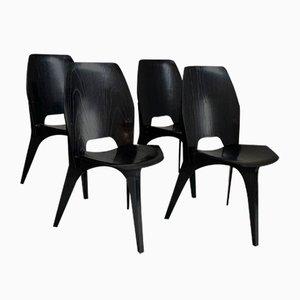 Esszimmerstühle von Eugenio Gerli für Tecno, 1950er, 4er Set