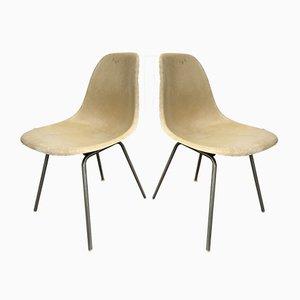 Modell DSS-H Beistellstühle aus Glasfaser von Charles & Ray Eames, 1960er, 2er Set