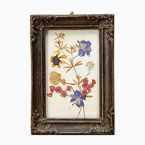 Pressed Flowers in Frame from VEB Bild & Souvenir Neugersdorf, 1960s