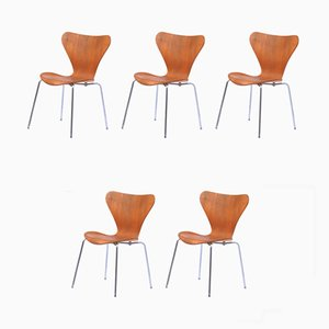 Series 7 Dining Chairs by Arne Jacobsen for Fritz Hansen, 1970s, Set of 5