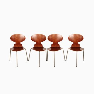 Teak Ant Dining Chairs by Arne Jacobsen for Fritz Hansen, 1950s, Set of 4