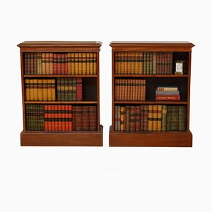 Vintage Edwardian Style Cabinets, 1990s, Set of 2
