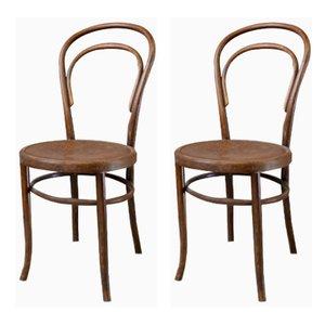 Antike Bugholz Esszimmerstühle von Fischel, 2er Set