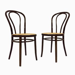 Mid-Century Bentwood Dining Chairs by Thonet, Set of 2