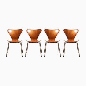 Mid-Century Teak Model 3107 Dining Chairs by Arne Jacobsen for Fritz Hansen, 1960s, Set of 4