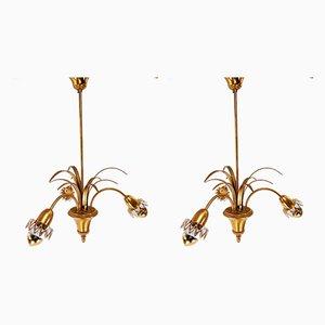 Lampade in ottone di Boulanger, anni '60, set di 2