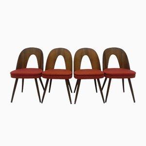 Dining Chairs by Antonín Šuman, 1960s, Set of 4