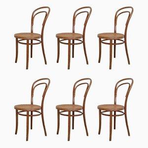 No. 14 Esszimmerstühle von Michael Thonet für ZPM Radomsko, 1960er, 6er Set