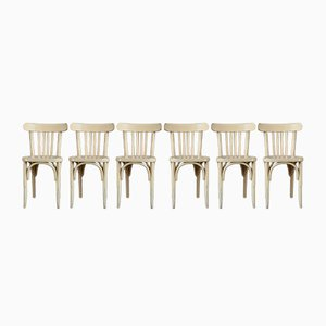 Dining Chairs, 1950s, Set of 6
