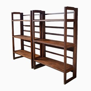French Adjustable Shelves, 1950s, Set of 2