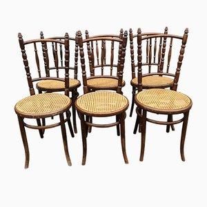 Antike Bugholz Esszimmerstühle von Fischel, 6er Set