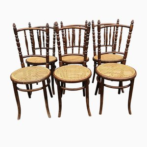 Antique Bentwood Dining Chairs from Fischel, Set of 6
