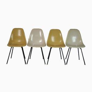 Sillas de comedor Mid-Century de fibra de vidrio negra de Charles & Ray Eames para Herman Miller. Juego de 4