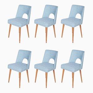 Chaises Shell de Bydgoszcz Furniture Factory, Pologne, années 60, Set de 6