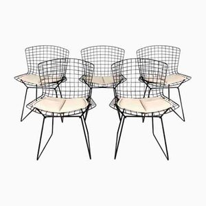 Dining Chairs by Harry Bertoia for Knoll Inc. / Knoll International, 1970s, Set of 5